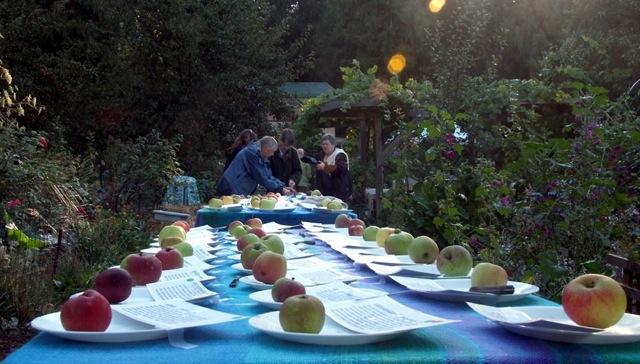 webHarry-apples-on-table3
